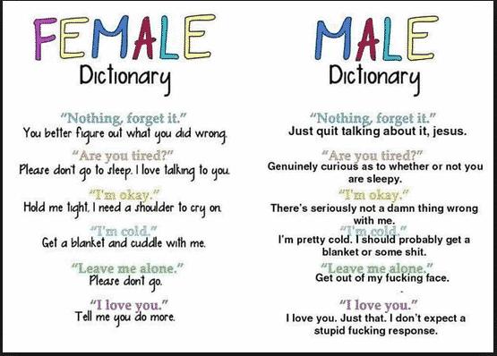 Like Google Translate For Getting Girls